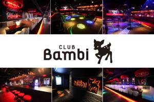 1CLUB Bambi