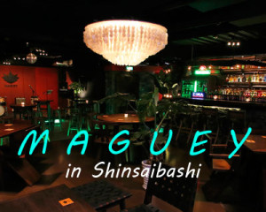 maguey2